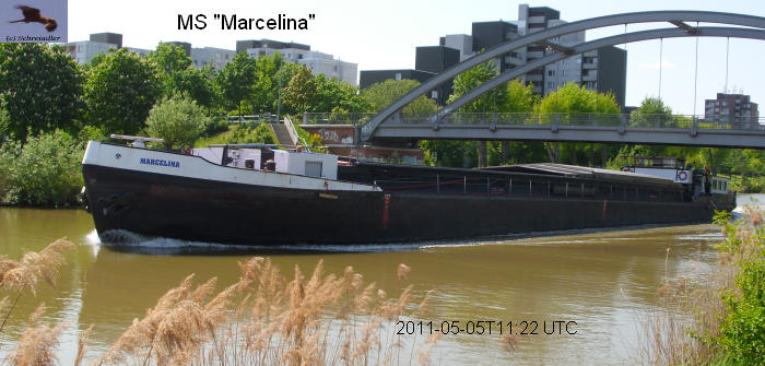 marcelina 6